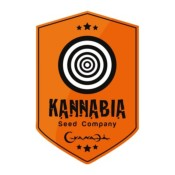 Graines de Swiss Dream CBD (Kannabia)